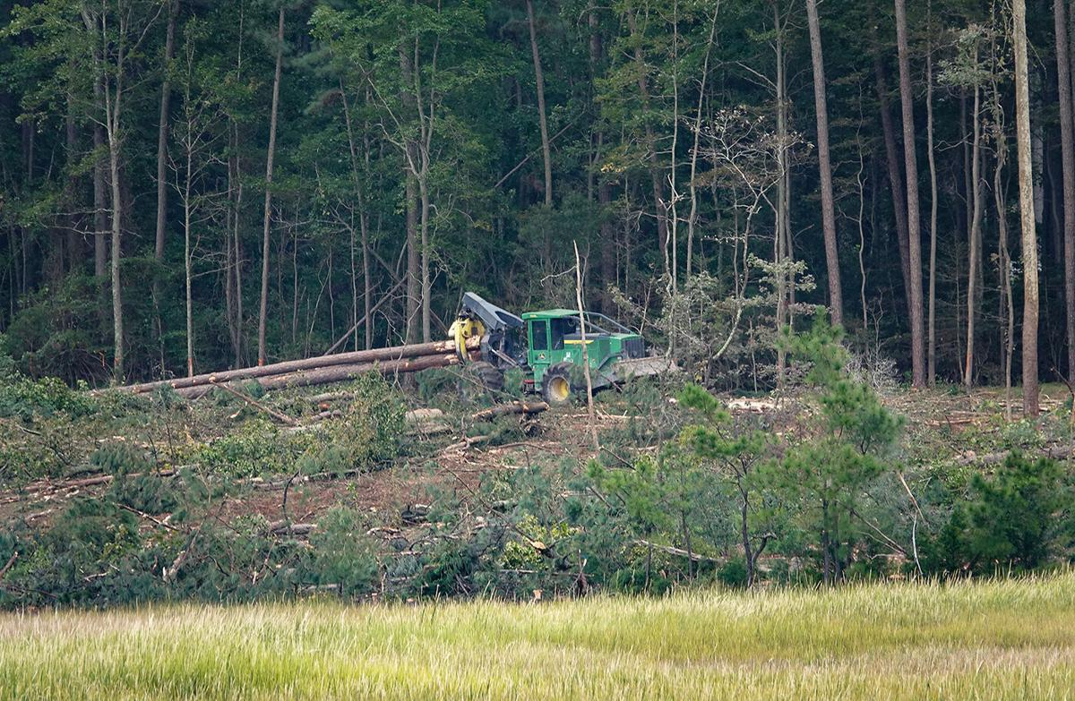 Truck at tree-cutting site, Camp Peary, VA