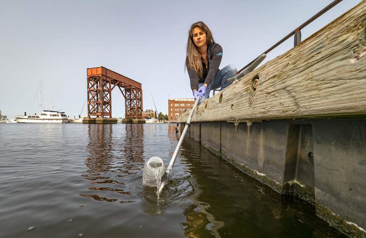 Baltimore Harbor water monitoring