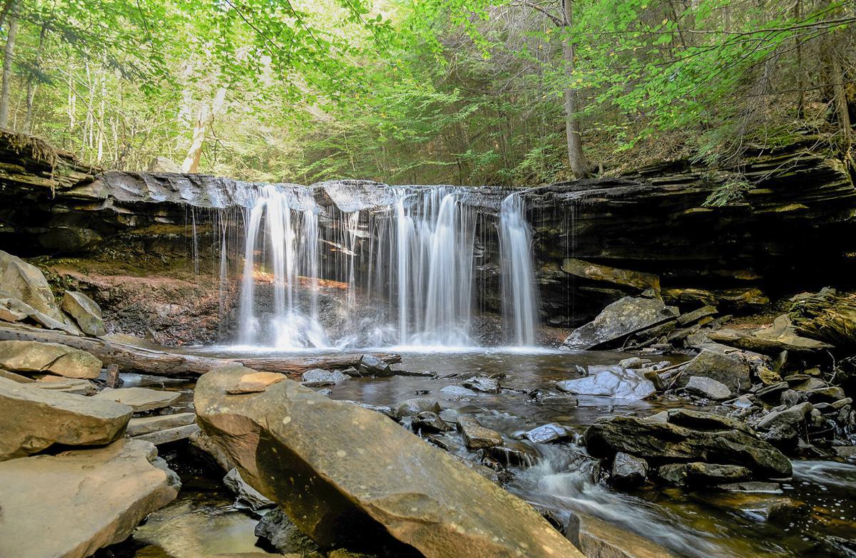 Oneida Waterfall, Ricketts Glen State Park, PA
