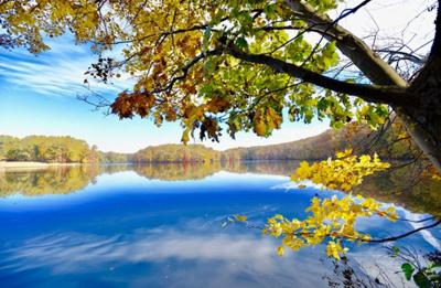 Warmer temperatures could have chilling effect on fall foliage