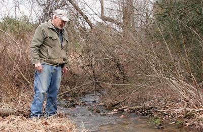 Partnership's new tree-tment helps PA streams, streets tackle runoff ills