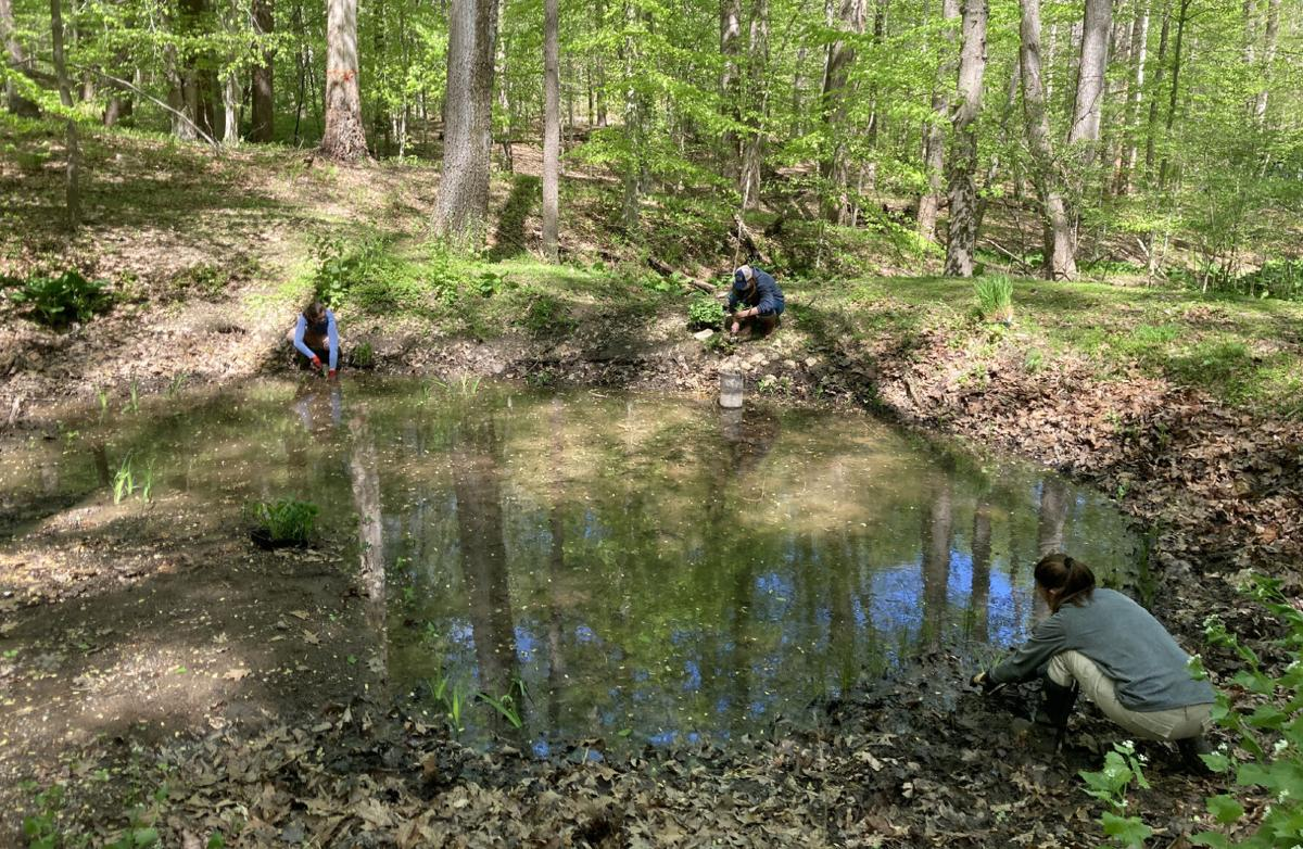 Chesapeake Conservation Corps training day