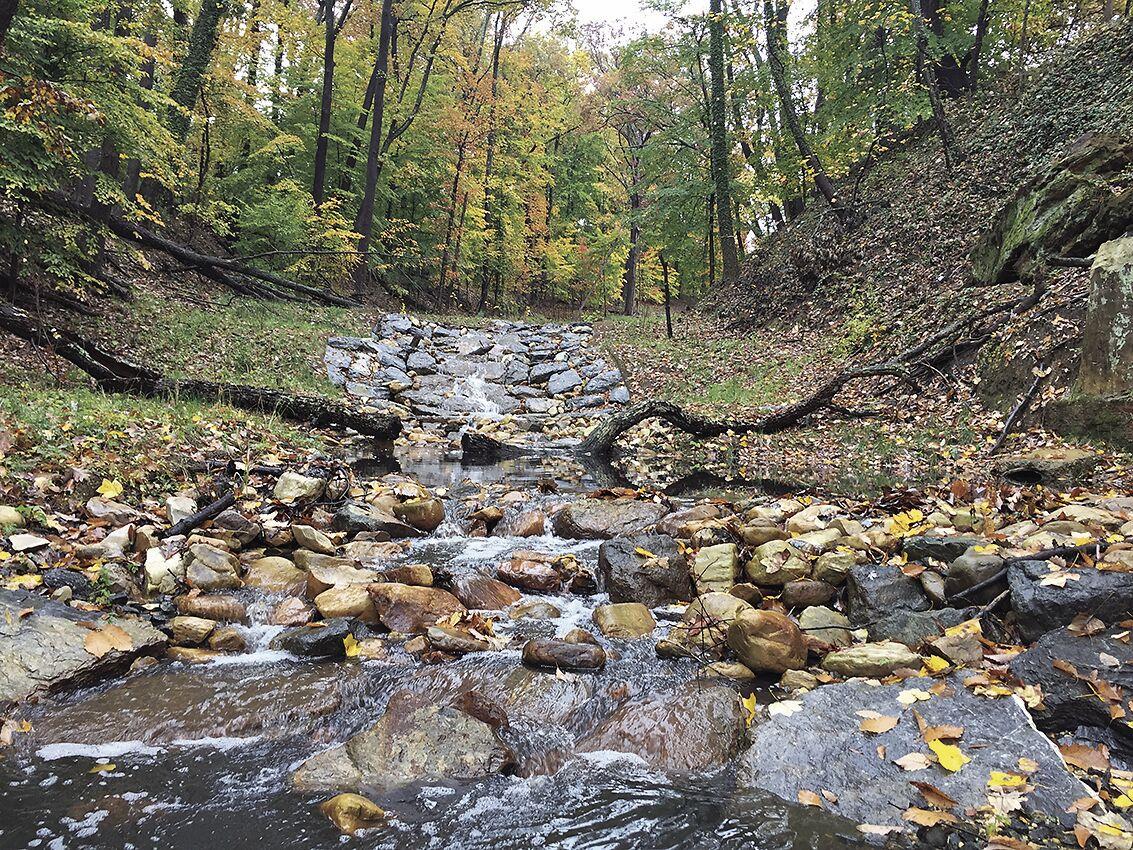 Stream in Alger Park, DC, after restoration
