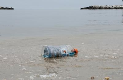 Picture of Chesapeake microplastics grows clearer