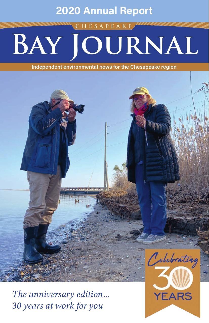 Annual Report 2020