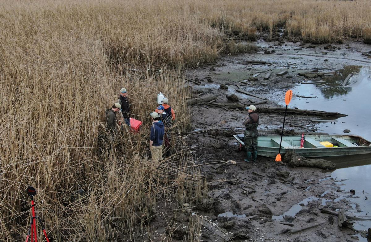 Archaeologists along the Nansemond River