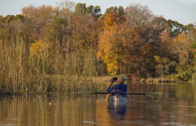 Paddling on Miles Creek, MD