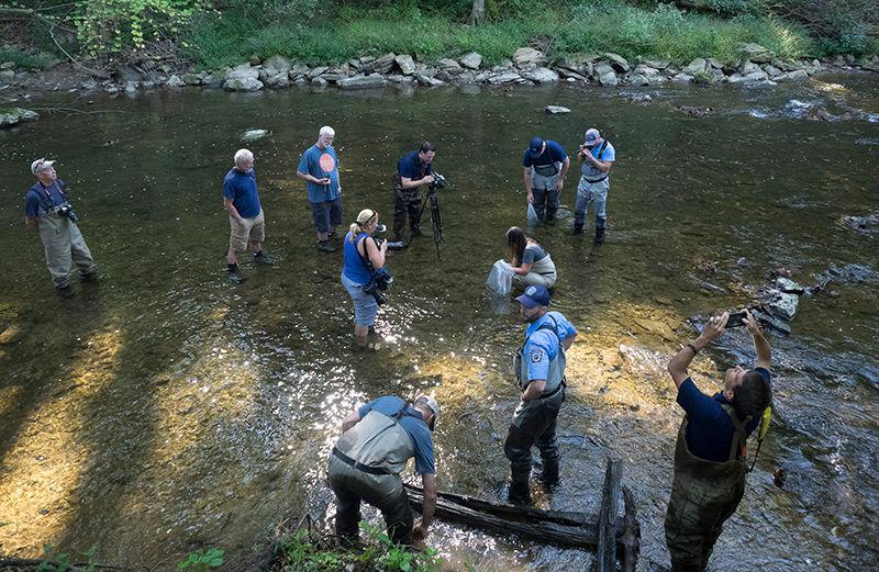 Chesapeake logperch release