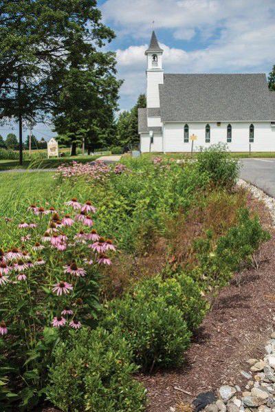 Rain garden at a church