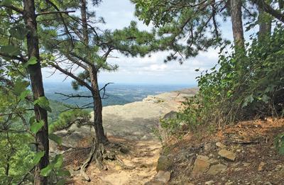 Appalachian Trail in West Virginia