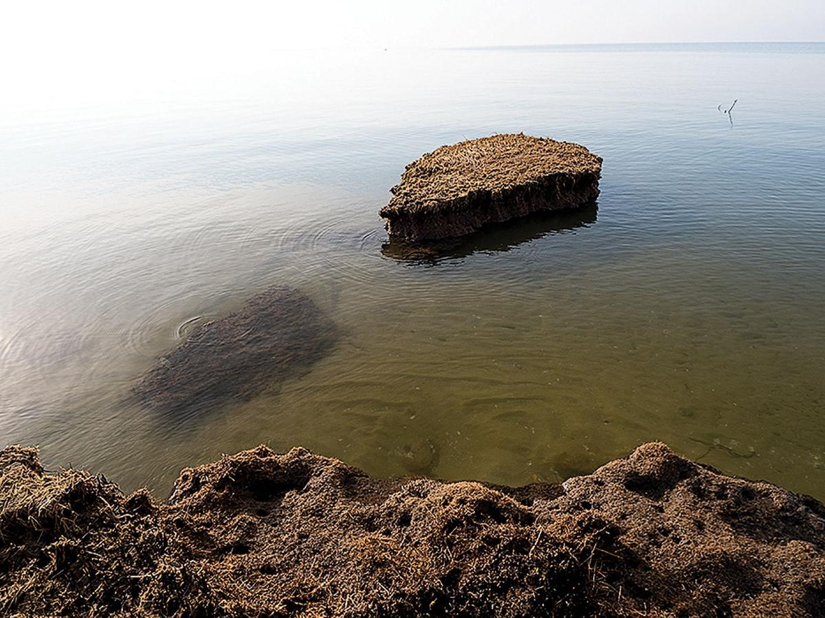 Erosion at Barren Island, MD