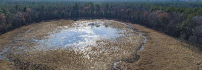 New wetlands rule imperils Chesapeake Bay cleanup, groups say