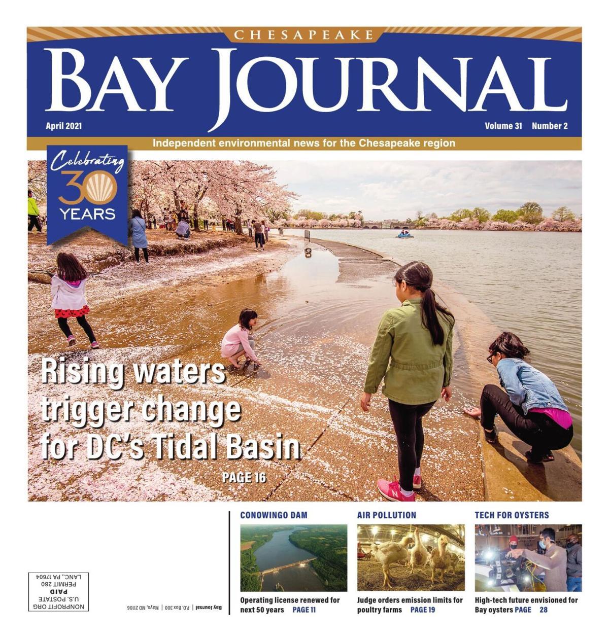 Bay Journal 2021 April