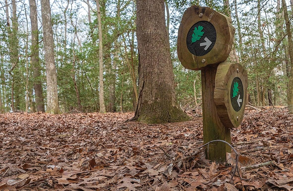 Trail signs at Nassawango Creek Preserve, MD