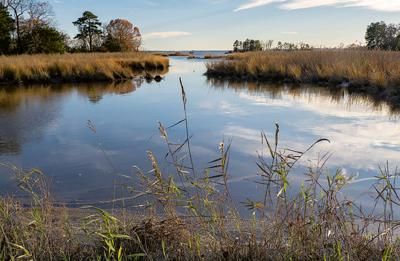 View of Choptank River, MD