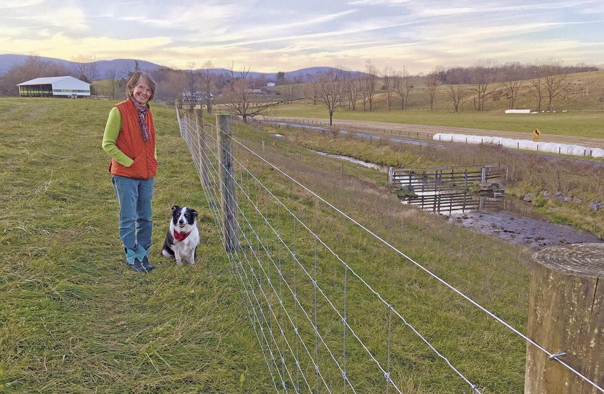 Stream fencing on VA farm