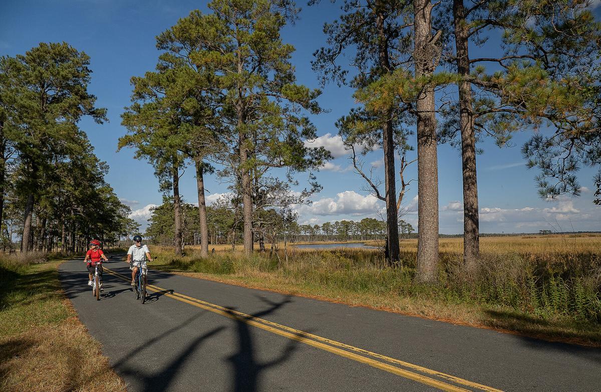 Bicycling at Blackwater