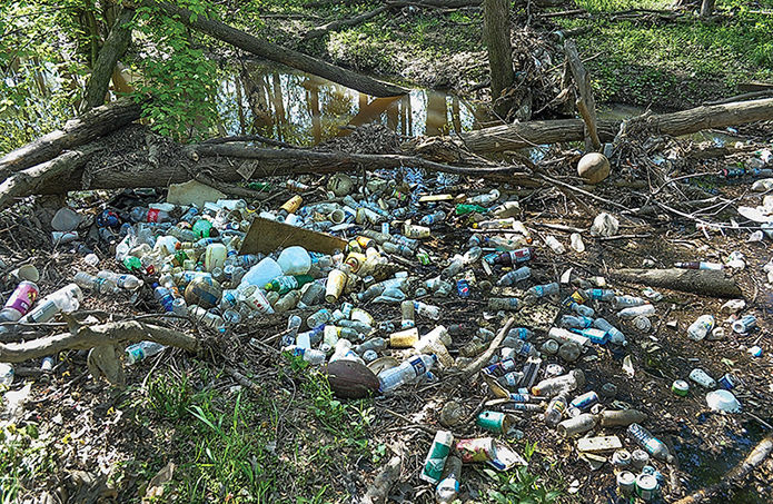 Fees and bans reduce plastic pollution, change behavior