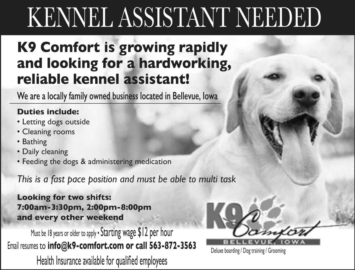 K9 Comfort Kennel Assistant Needed
