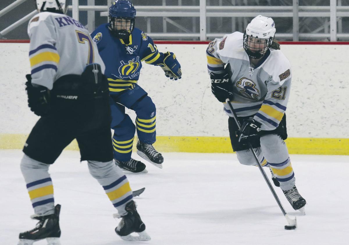 0205 SPO BMHS hockey2 BDN