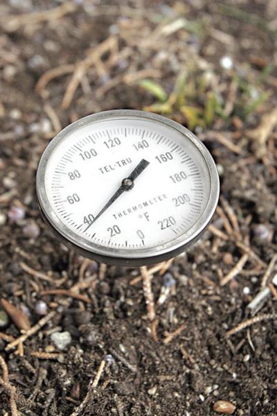 For Central Oregon Gardening Pay Attention To Soil Temp Lifestyle Bendbulletin Com
