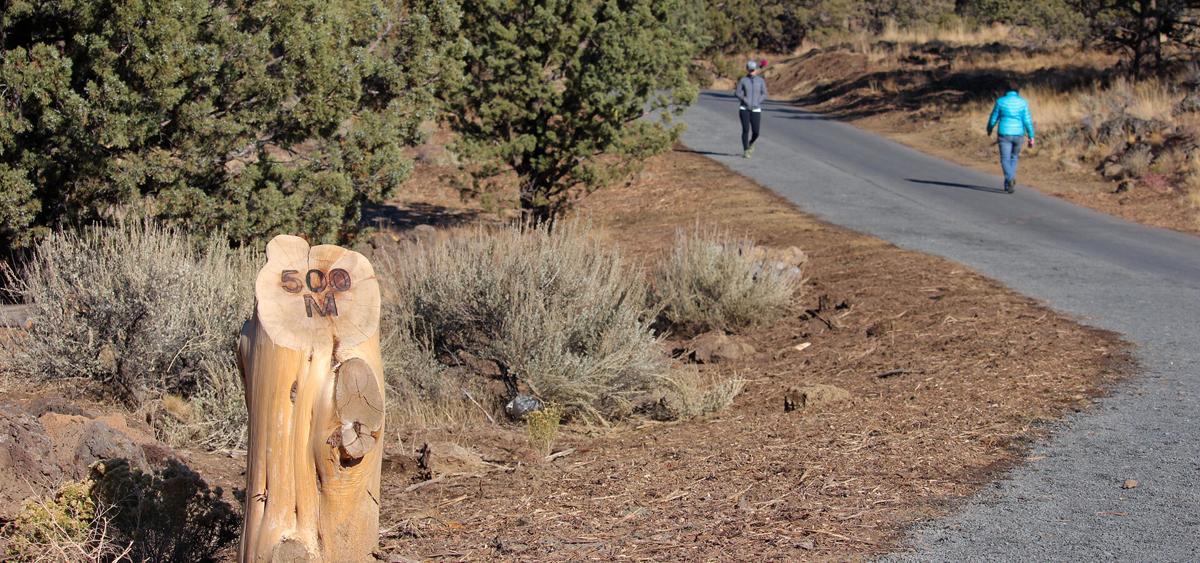 Trail - Rockridge-Park-Fitness-Loop.jpg