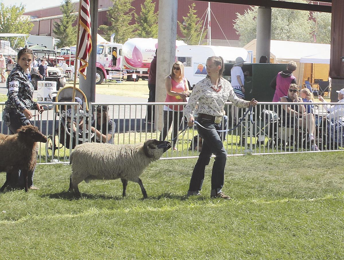 County fairgrounds
