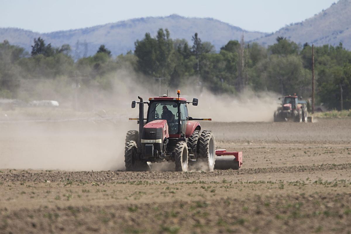 Dry farms