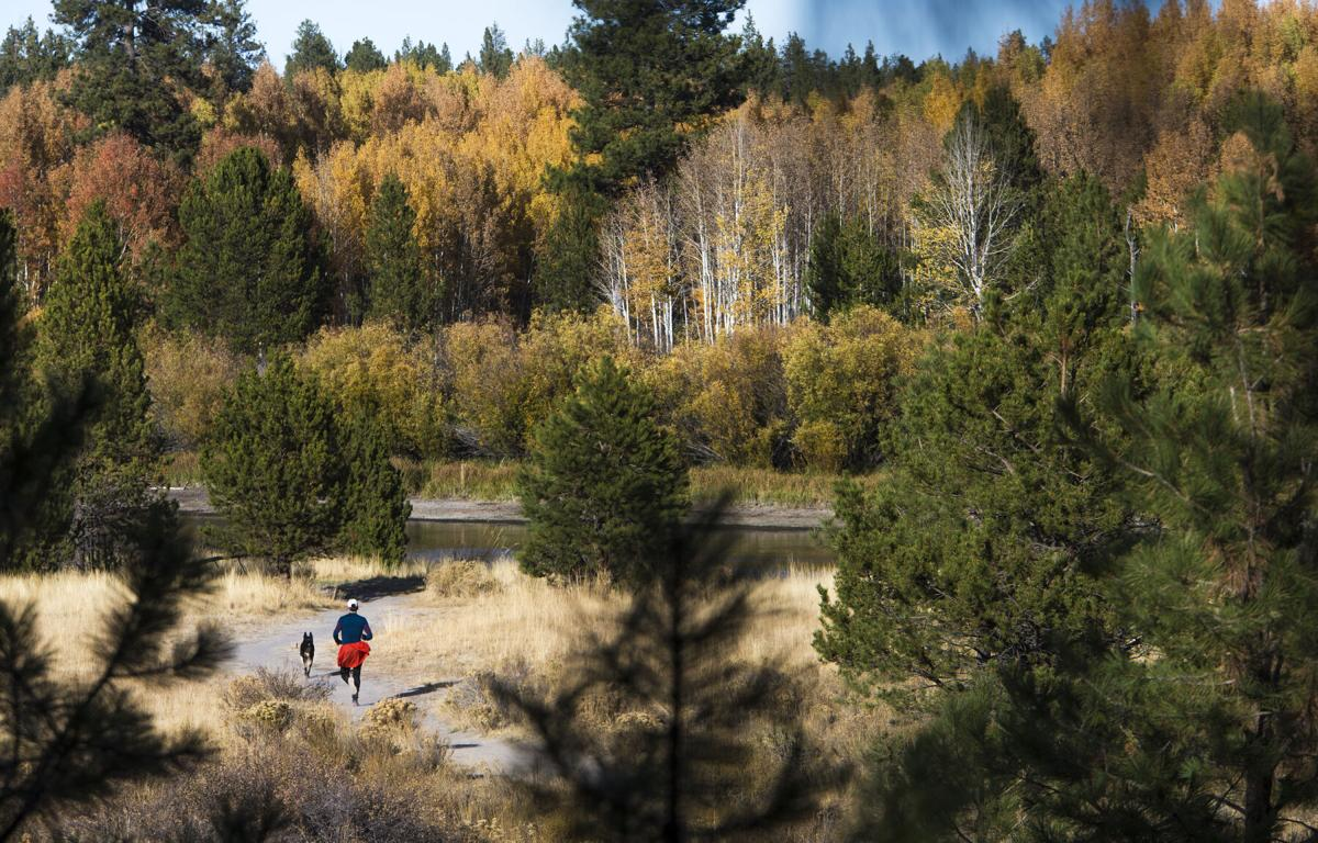 Trail running (copy)