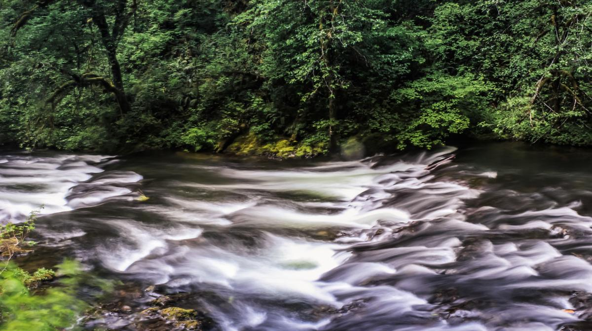 Falling for Silver Falls State Park