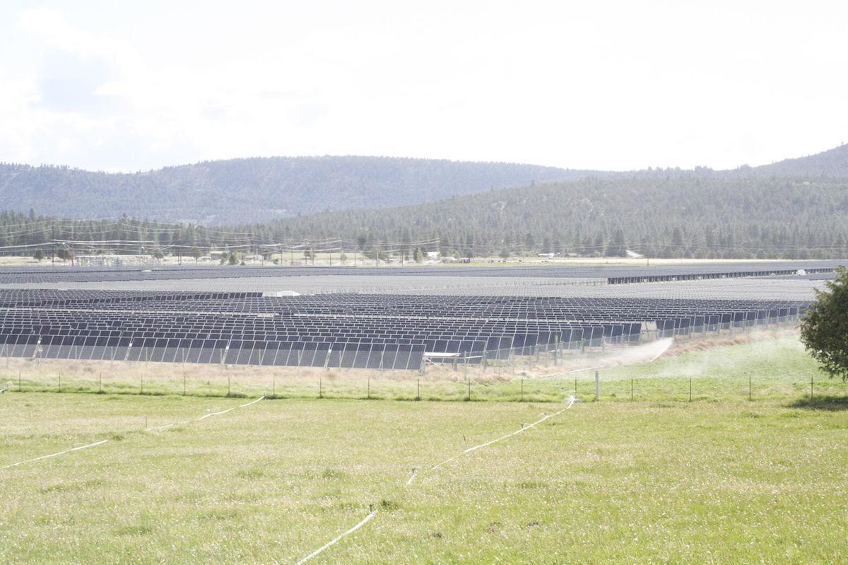 MP MP solar 7.jpg