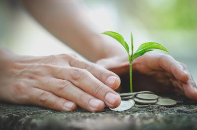 Hand protect money stack with plant growing on coins. saving money coins, Hands that are taking care of trees on coins, concept finance