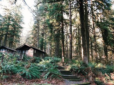 silver falls cabins