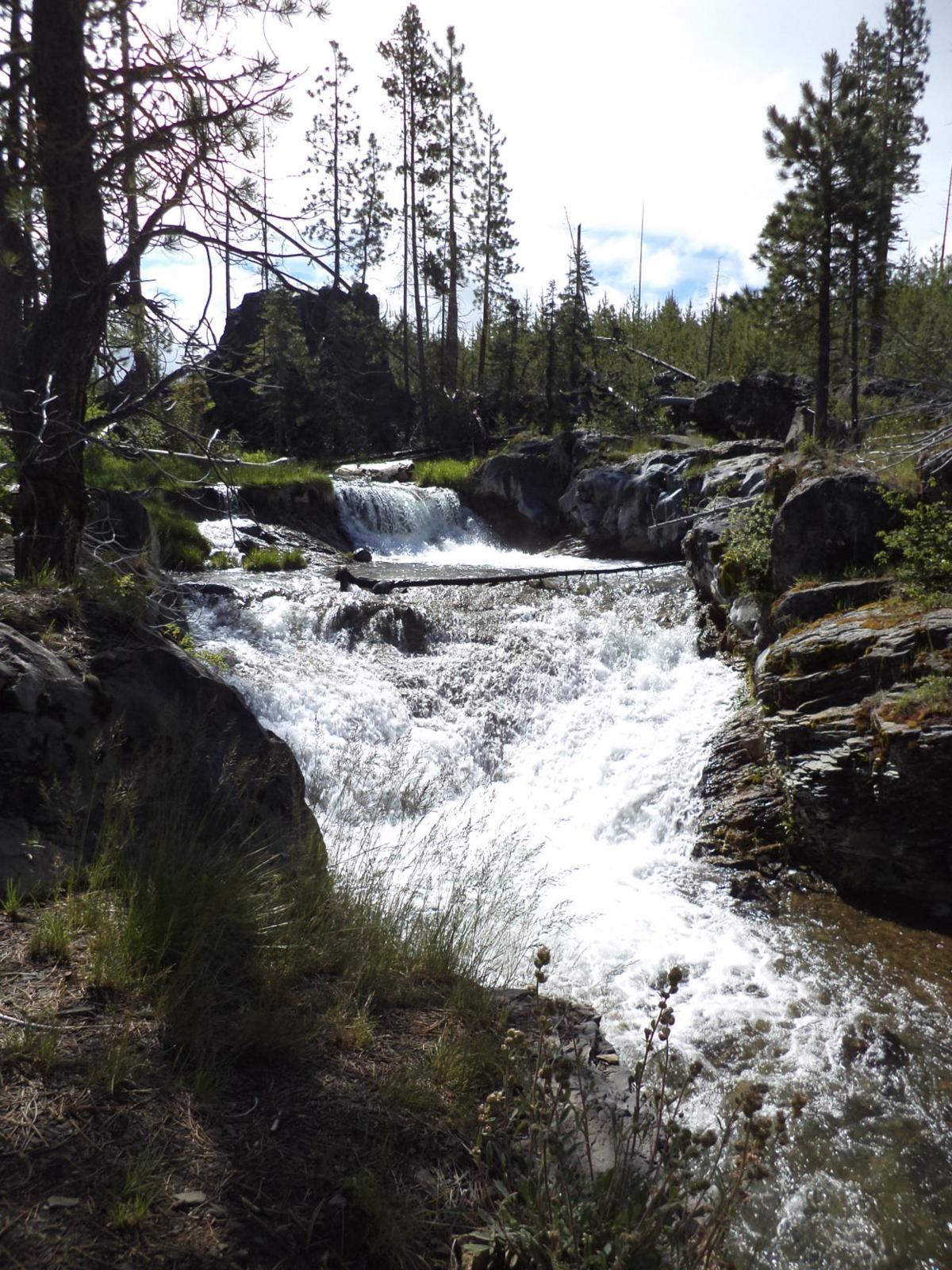 Hike Paulina Creek for sights, swimming holes