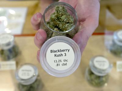 Report: Oregon has enough marijuana to last 6 ½ years