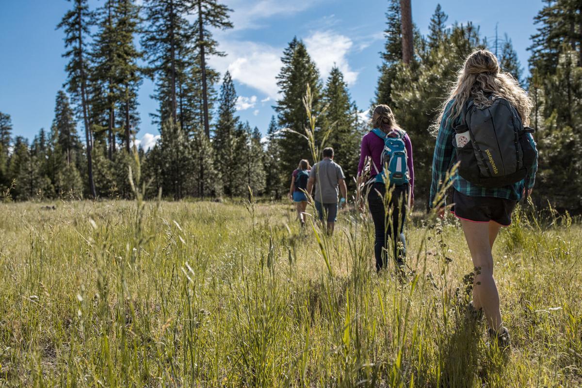 CaitlinEddolls.Metolius hikers.jpg