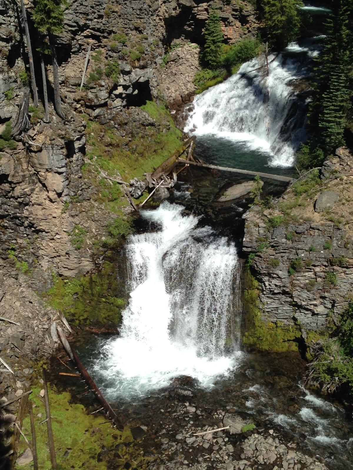 Mountain Bike Trail Guide: North Fork-Farewell Loop