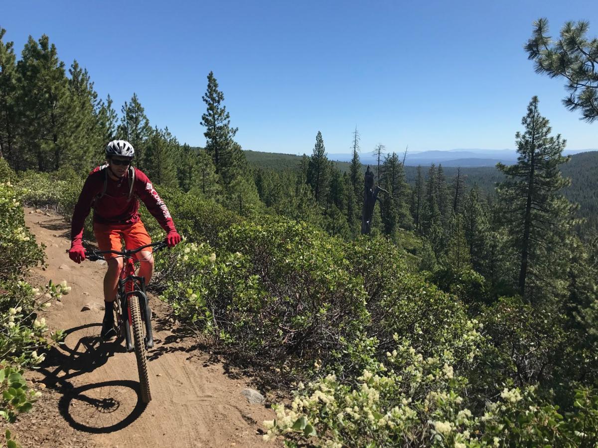 Mountain Bike Trail Guide: Swede Ridge Loop