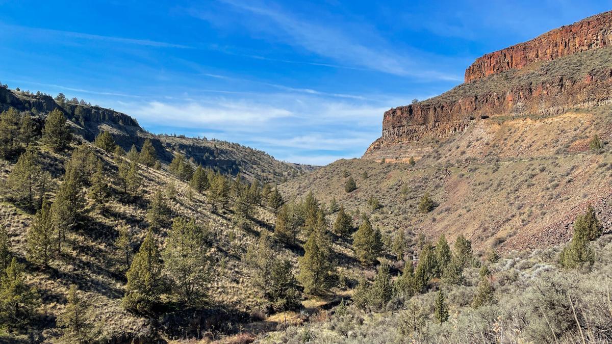 Willow Creek Canyon-7.jpg (copy)