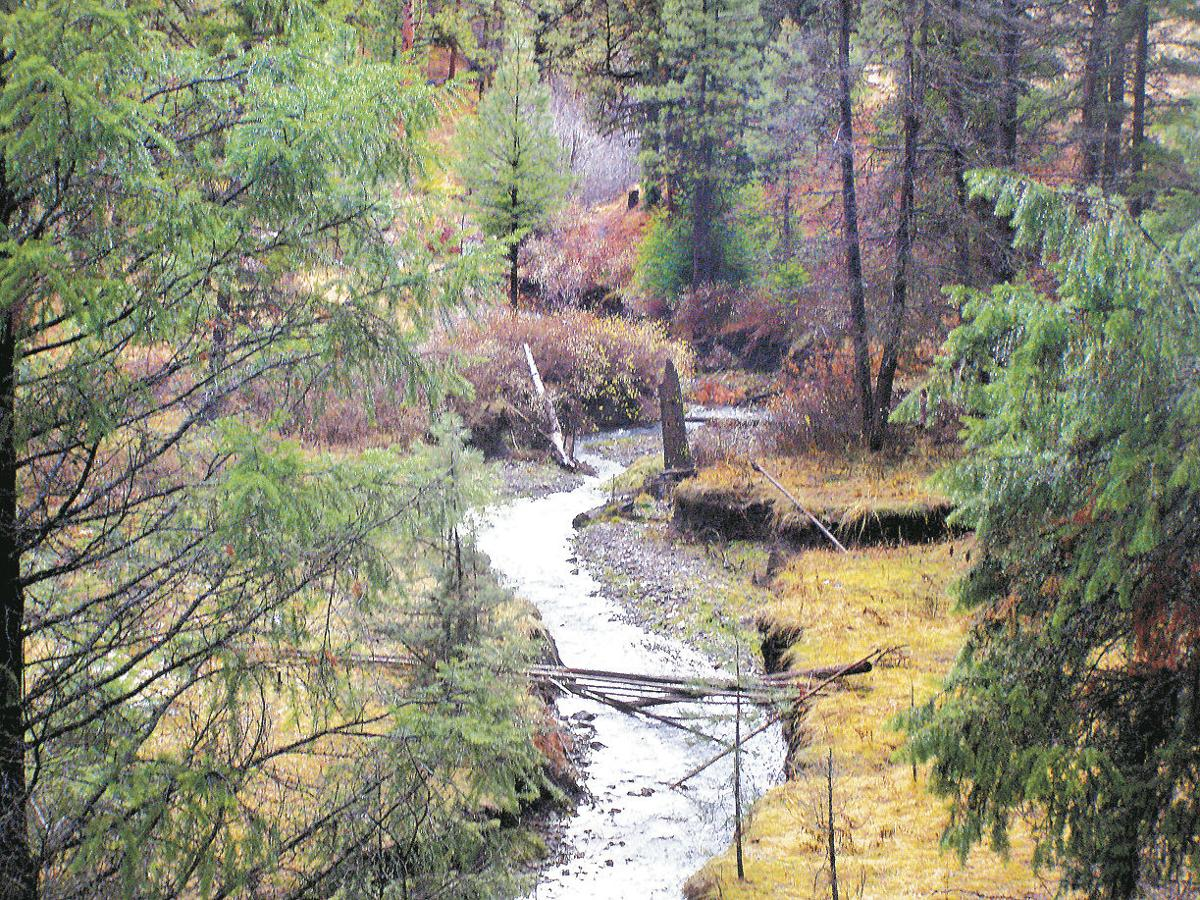 Wilderness Act turns 50 (copy)