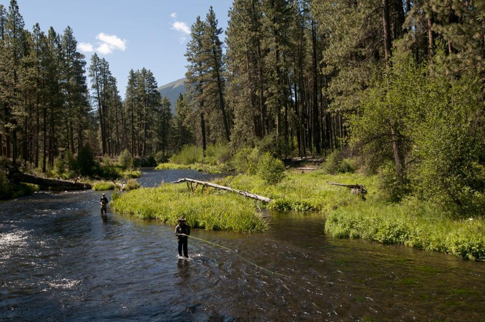 Fish habitat restoration on the Metolius to start Thursday