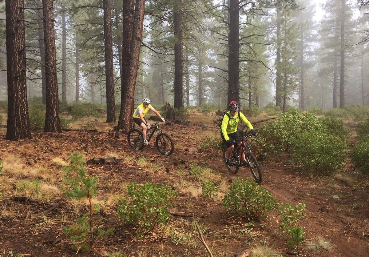 New trails — and trees — in Sunriver