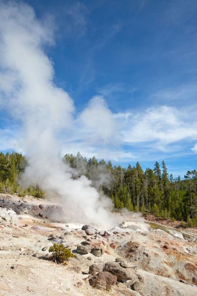 Yellowstone's tallest geyser has been erupting more often