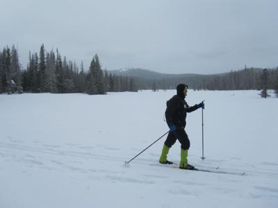 Nordic skiing at Swampy Lakes