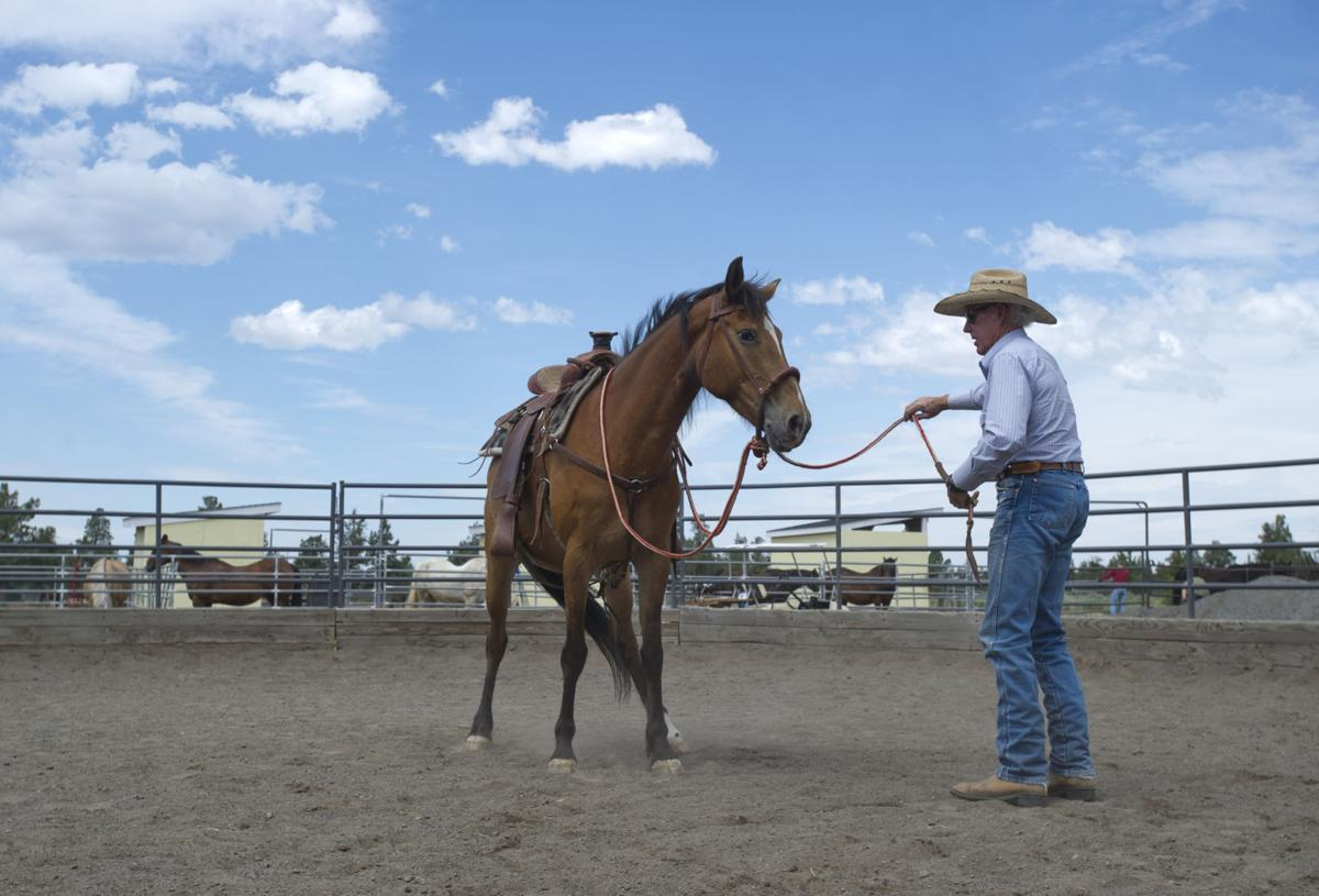 Bend horse sanctuary is fighting to keep the gates open