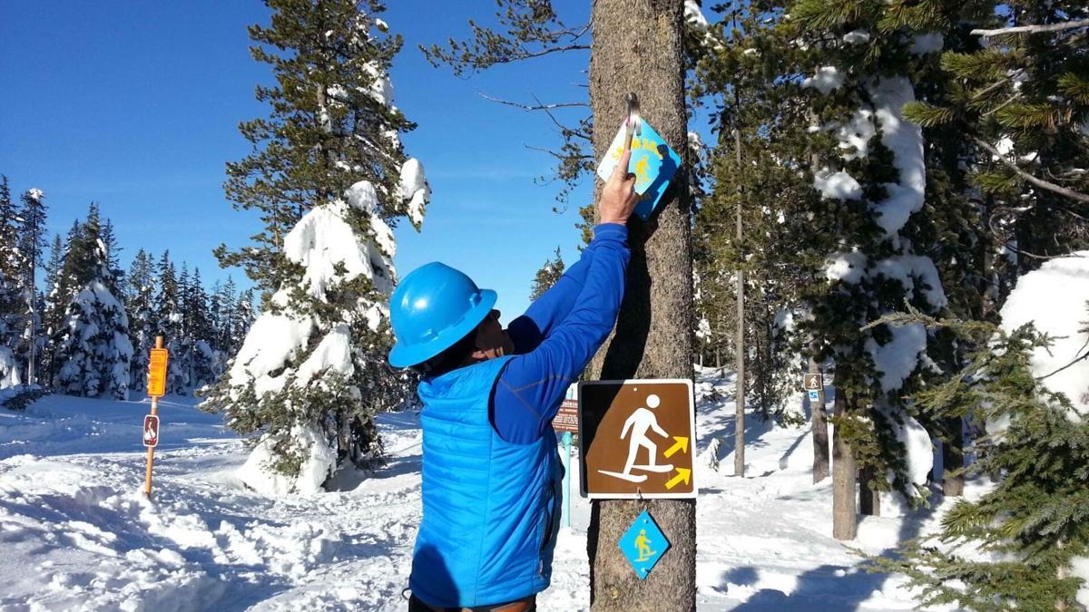 Larger snowshoe trail markers  20170116_095011s_Original (1).jpeg