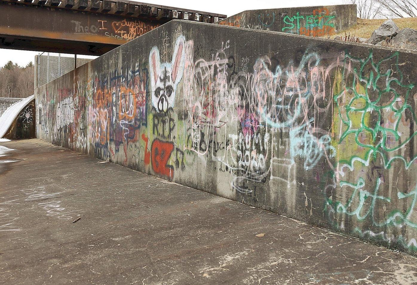 Police seek information about racist graffiti at Lake Paran