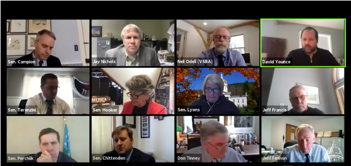 senate-education-committee-meeting-zoom-screenshot-20210209.png