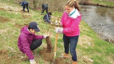 Trout Unlimited launches major restoration effort on Battenkill