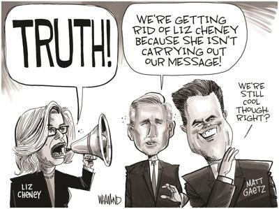Cartoonist's Take